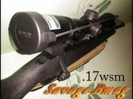 Best Scopes For 17 WSM